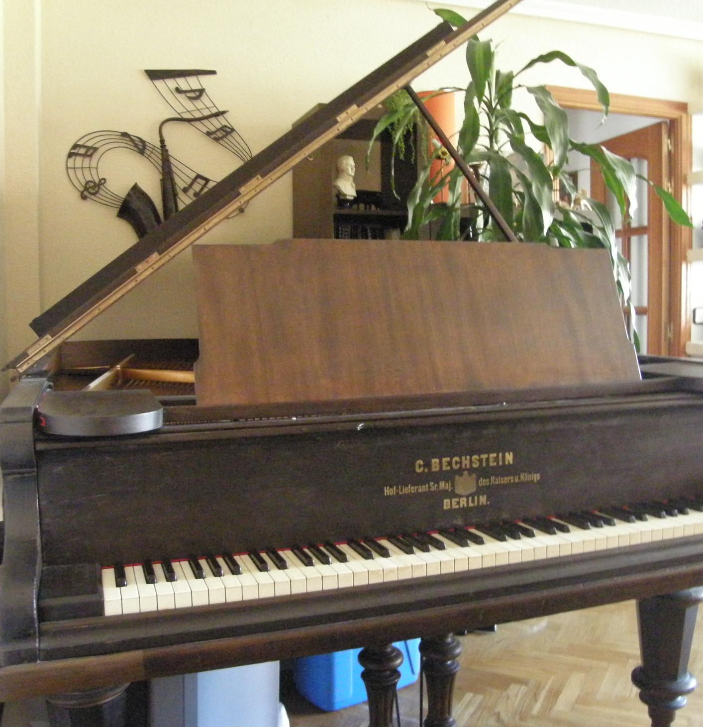 Laura Martín's Bechstein piano 2